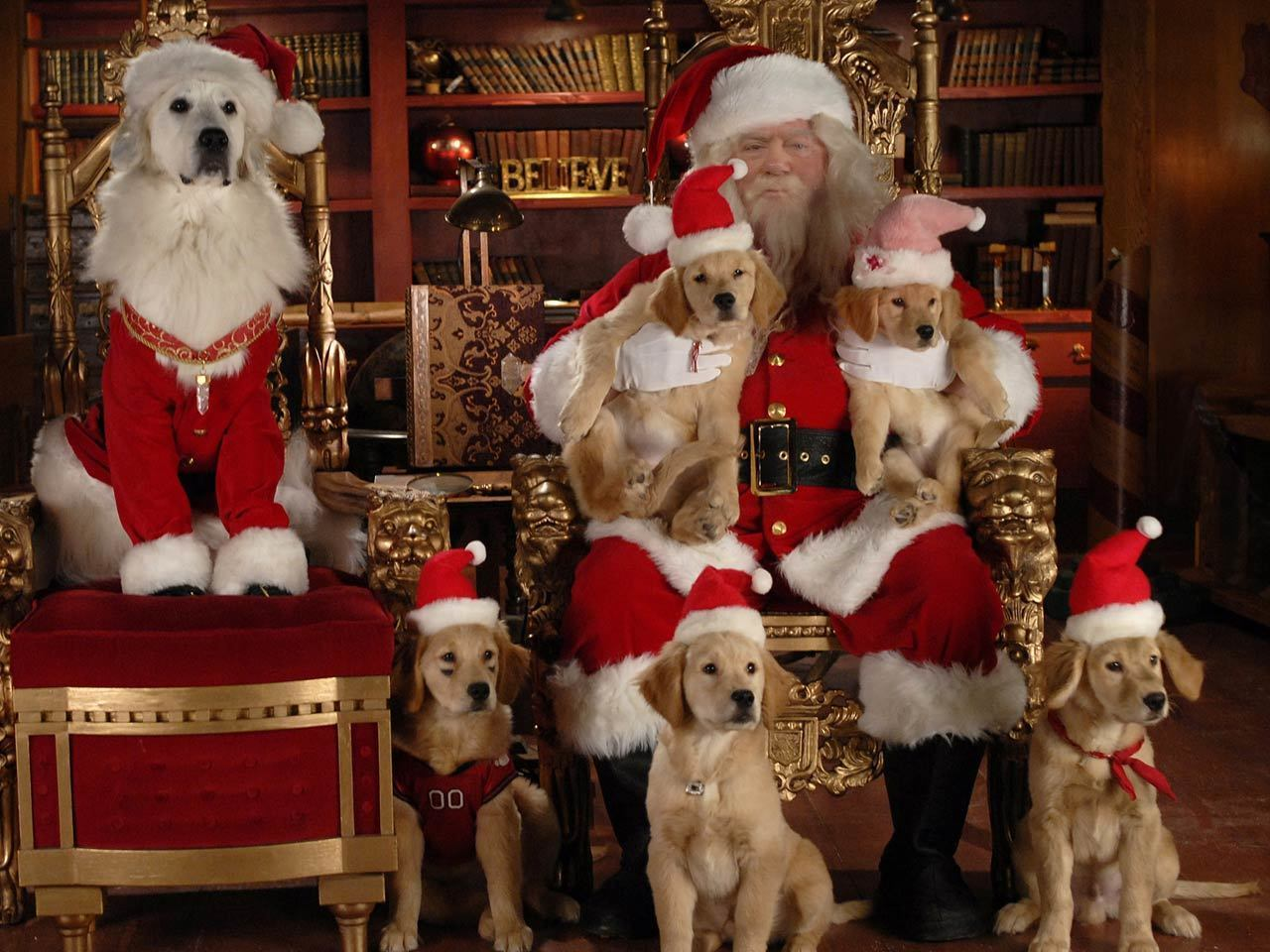Santa Buddies Gallery