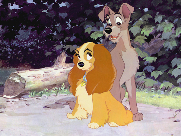 Lady and the Tramp Gallery
