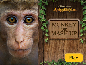 Monkey Kingdom: Monkey Mash-Up