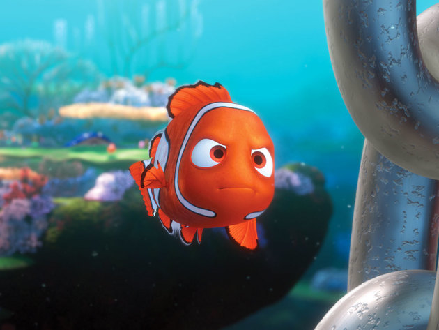Nemo goes against Marlin's wishes and swims past the drop off to prove that he's brave.