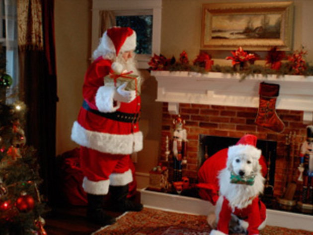 Santa and his furry counterpart, Santa Paws, deliver Christmas gifts.