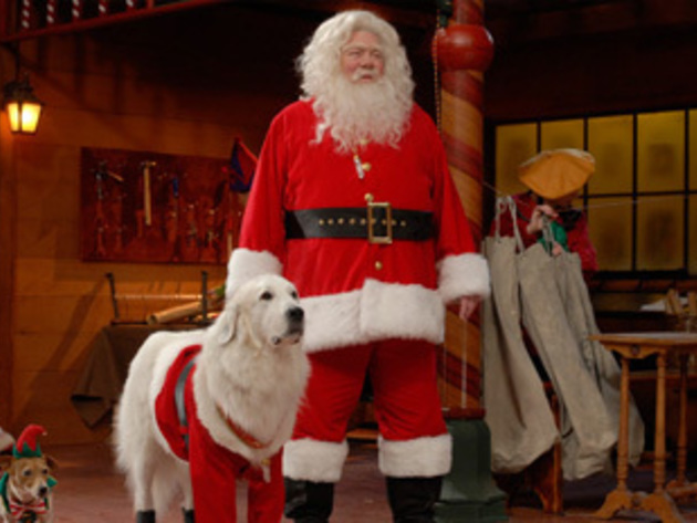 Santa and Santa Paws back at the workshop.