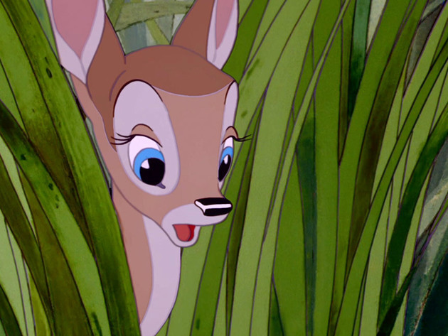 Bambi's childhood friend peeks out from behind the grass.