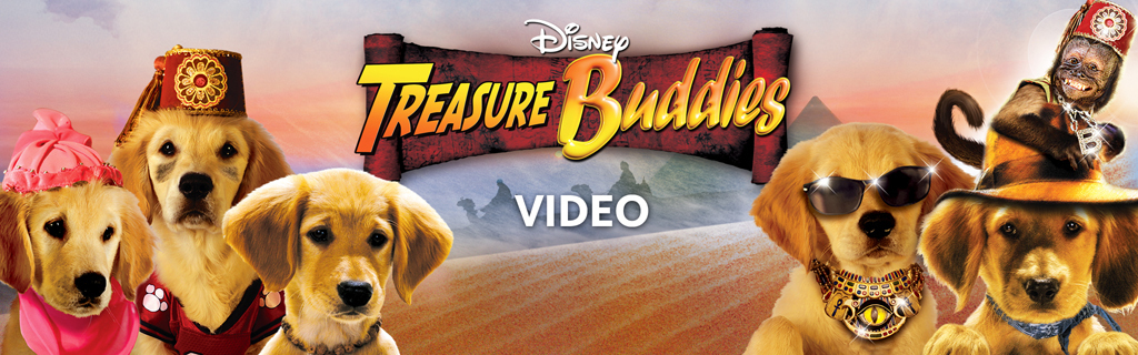 Treasure Buddies Video Hero