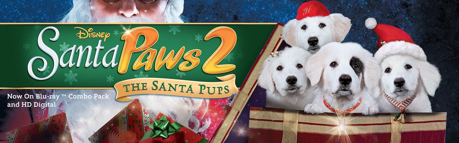 Santa Paws - Home