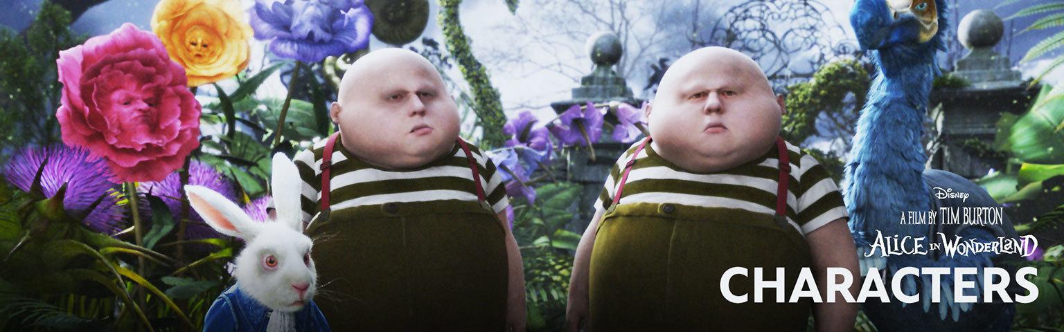 Alice in Wonderland - Character Hero