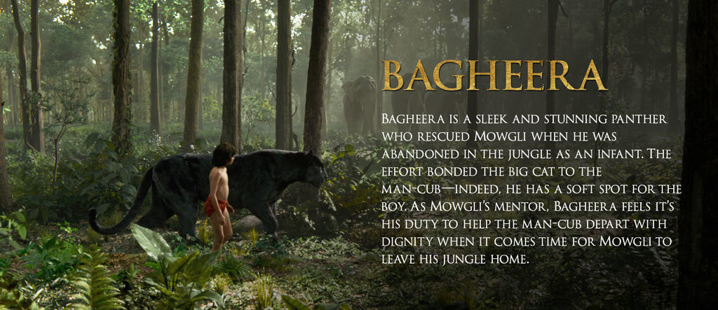 Jungle Book Characters Hero - Bagheera