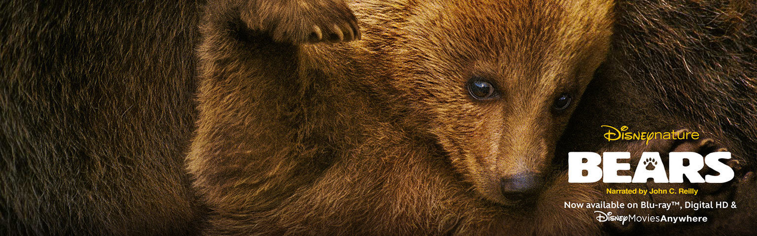 Bears - nature homepage - Now Available on BD and Digital HD