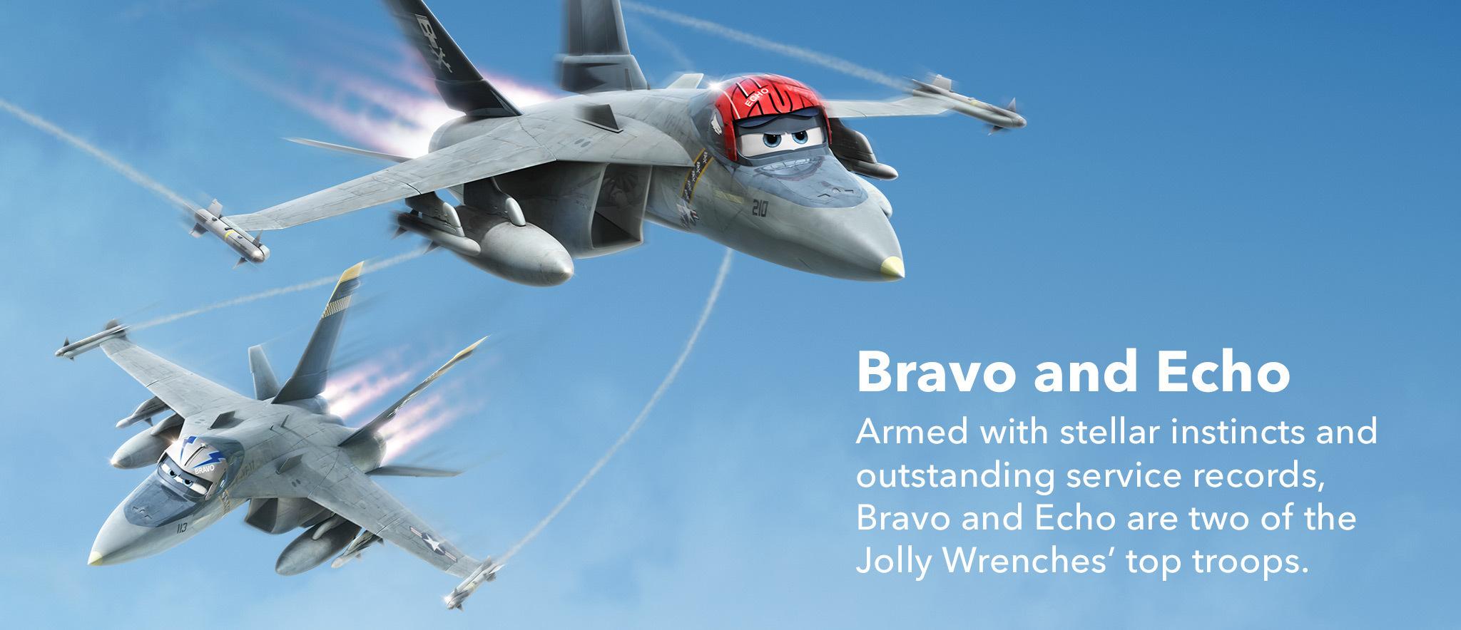 Bravo & Echo