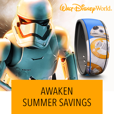 Walt Disney World Summer Offer