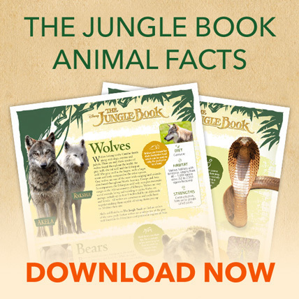 The Jungle Book Animal Facts