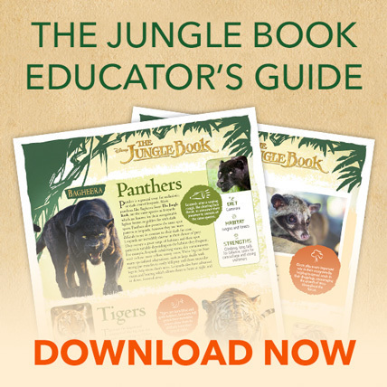 The Jungle Book Educator's Guide