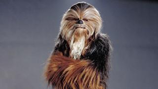 Wookiee History Gallery